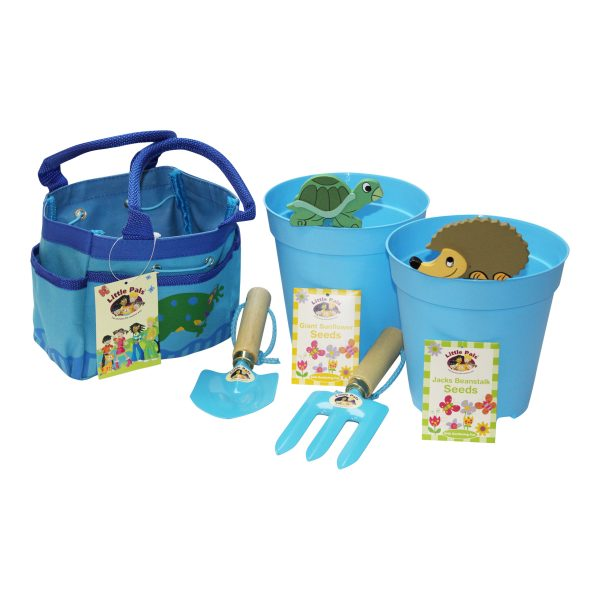 grow your own sunflower and beanstalk kit