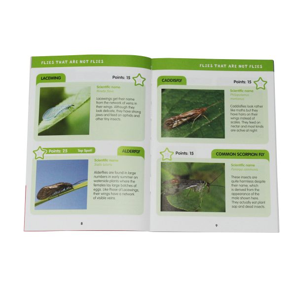 childrens bug kit book