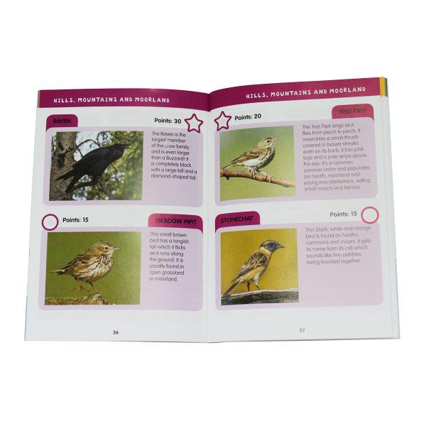 i-spy book of birds