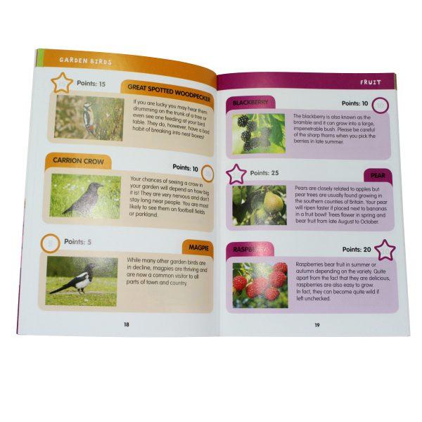 i-SPY Book