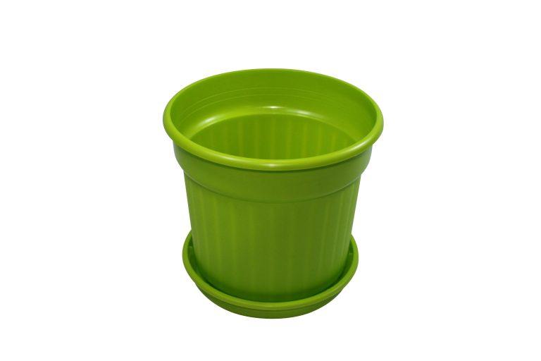 Green Pot