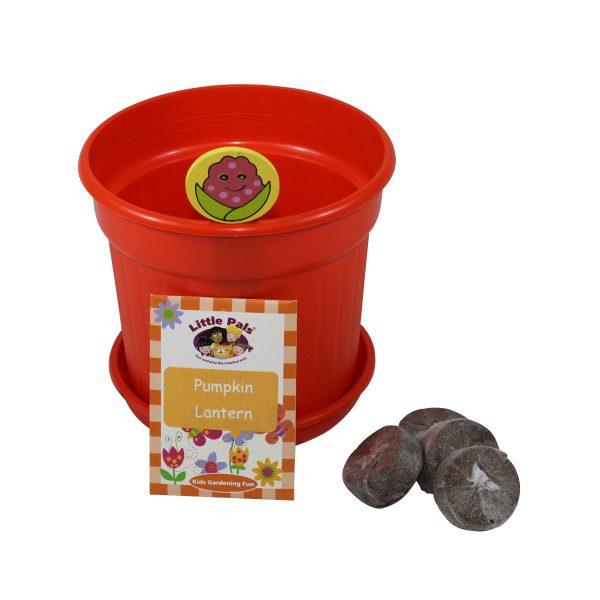 Pumpkin Lantern Gardening Set 3